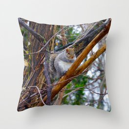Chubby Squirrel Throw Pillow