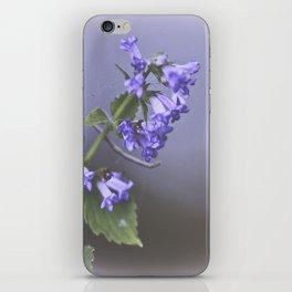 La Couleur de Violette iPhone Skin