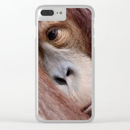 Two young sleepy orangutans Clear iPhone Case