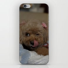 cute iPhone & iPod Skin