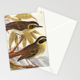 Neville W. Cayley - What Bird Is That? (1931) - Yellow-throated scrubwren Stationery Cards