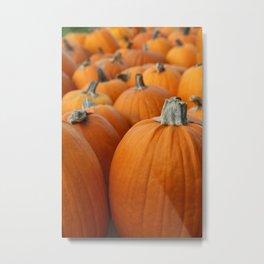 Pumpkins 3 Metal Print