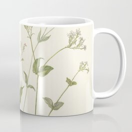 Herman Saftleven - Red and white Viscaria or peccary (1682) Coffee Mug