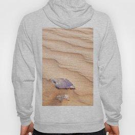 Sand Ripples in the Sahara Desert Hoody