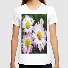 Three white and pink daisies T-shirt