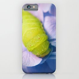 Caterpillar on Hydrangea Nature / Botanical / Floral Photograph iPhone Case