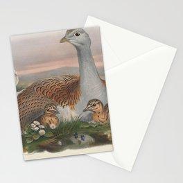 017 Great Bustard otis tarda4 Stationery Cards