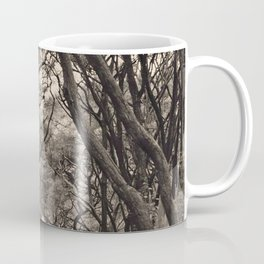 Acacia Grove Coffee Mug