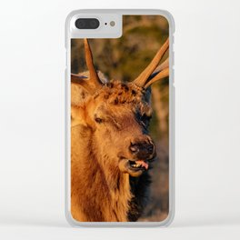 The Sneeze Clear iPhone Case