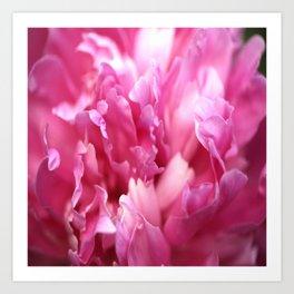 Pink Flower Petals Close-up #decor #society6 #homedecor #buyart Art Print
