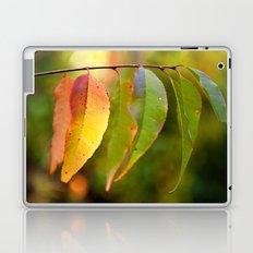 Chameleon Leaves Laptop & iPad Skin
