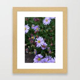 Light Purple Flowers Framed Art Print