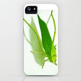 Kadydid iPhone Case