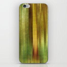Woodland Walk iPhone Skin