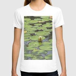 Lily pad sunshine T-shirt