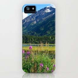 July at Tern Lake - II iPhone Case