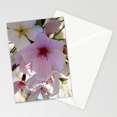 Cherry Blossom Stationery Cards