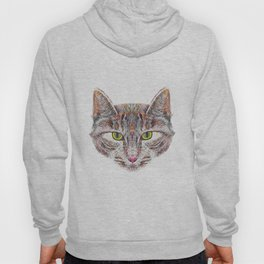 Broody Cat Hoody