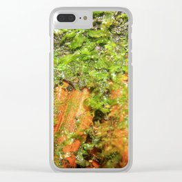Closeup image of the roots of the Sierra Palm - Clear iPhone Case