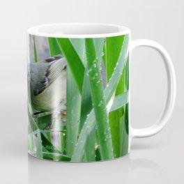 Kinglet Approaching Coffee Mug