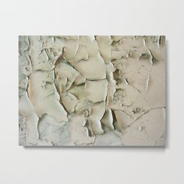 Dying wall Metal Print