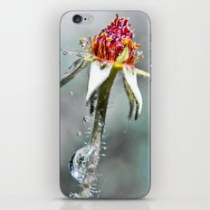 the last downpour iPhone & iPod Skin