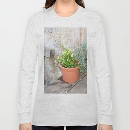 Pots of herbs against a stone wall Long Sleeve T-shirt