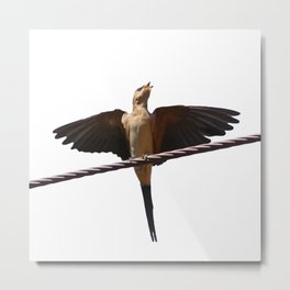 Swallow Song Vector Metal Print
