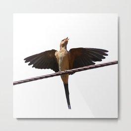 Swallow Song Vector Metal Print