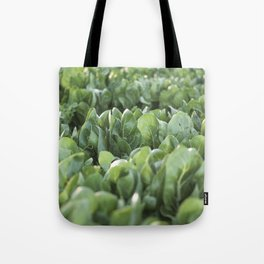 Food photography, macro photo, nature fine art, Italy, Sicily, Apulia, kitchen wall Tote Bag