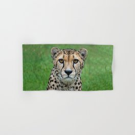 CHEETAH CHARM Hand & Bath Towel