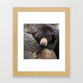 Oh Man, What a Day! Framed Art Print