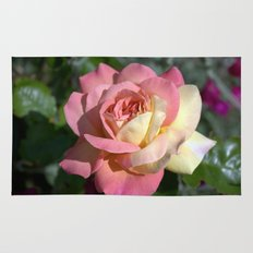 Pretty pink rose garden flower. Floral nature photography.   Rug
