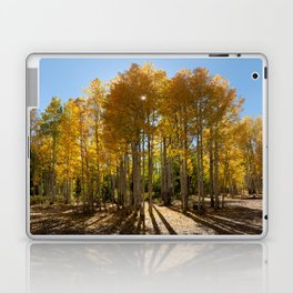Autumn Blaze outside of Crested Butte, Colorado for #Society6 Laptop & iPad Skin