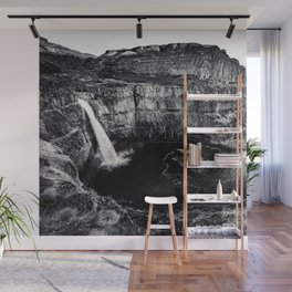 Hidden Waterfall Black and White Wall Mural