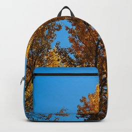 Late Fall Colour Backpack
