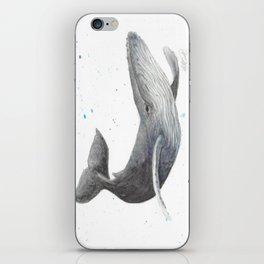Humpback Whale iPhone Skin