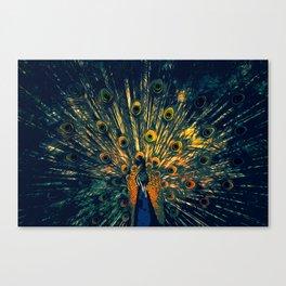 Peacock Illustration Graphic Art Wildlife Animal Oil Painting Design Feathers wild decor Oil Paint Canvas Print