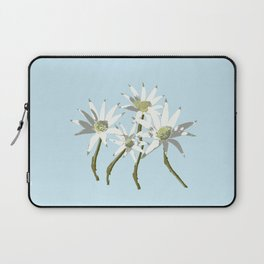 Flannel Flowers Actinotus helianthi Laptop Sleeve