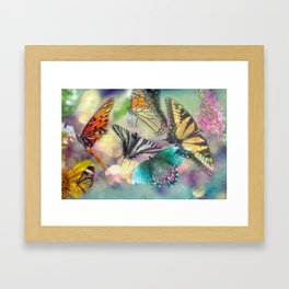 Butterfly Dance Framed Art Print