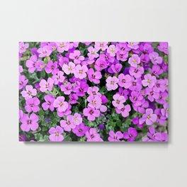 Blue Pillow Garden Plant Purple Metal Print