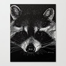 The Curious Raccoon Canvas Print