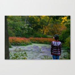 Fall in Boston Canvas Print