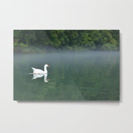 White Goose on Green River Metal Print