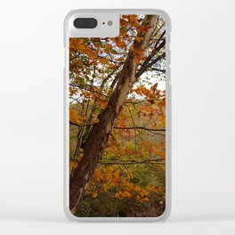 Fall in the Cuyahoga Valley National Park Clear iPhone Case