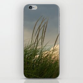 Windy // Nature Photography iPhone Skin