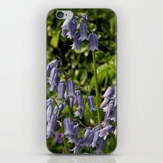 Spanish Bluebells iPhone & iPod Skin