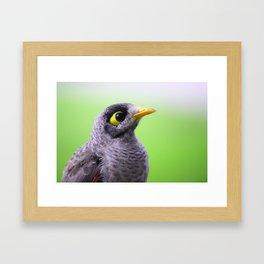 Alert Framed Art Print