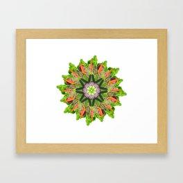 veggies mandala Framed Art Print