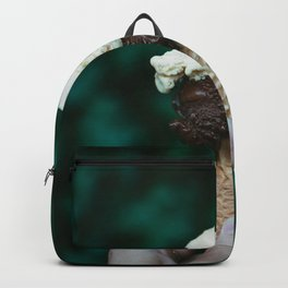 Icecream - tropical chocolate summer vibes photography Backpack